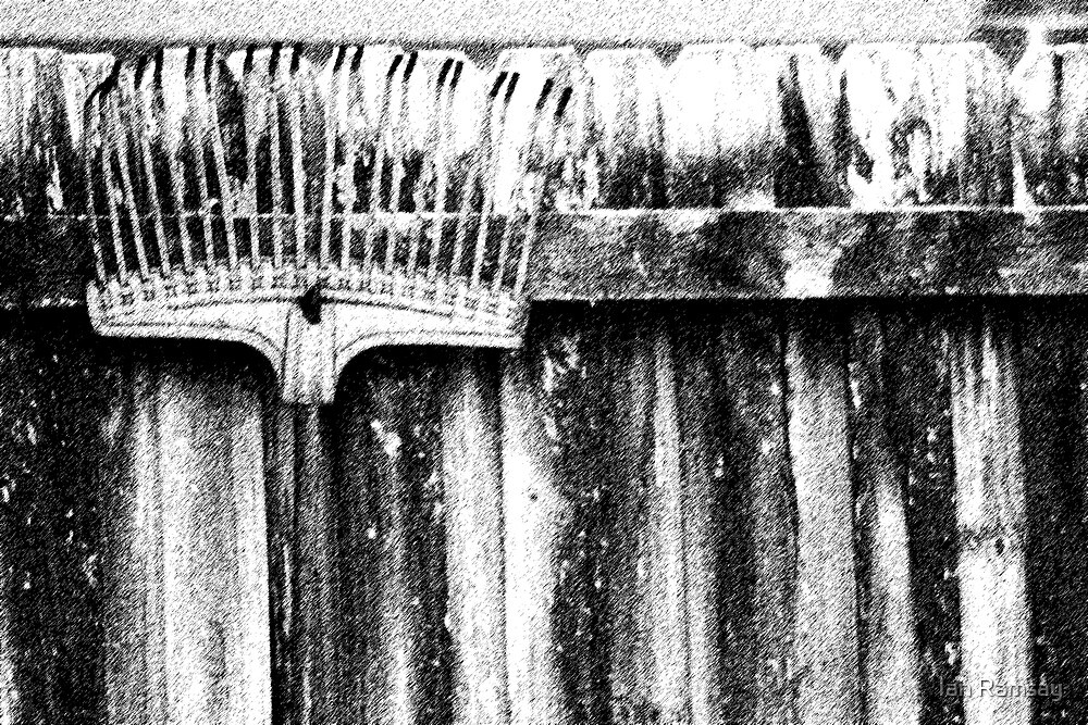 Rake on the fence. by Ian Ramsay