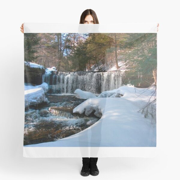Winter Afternoon At Oneida Falls Scarf