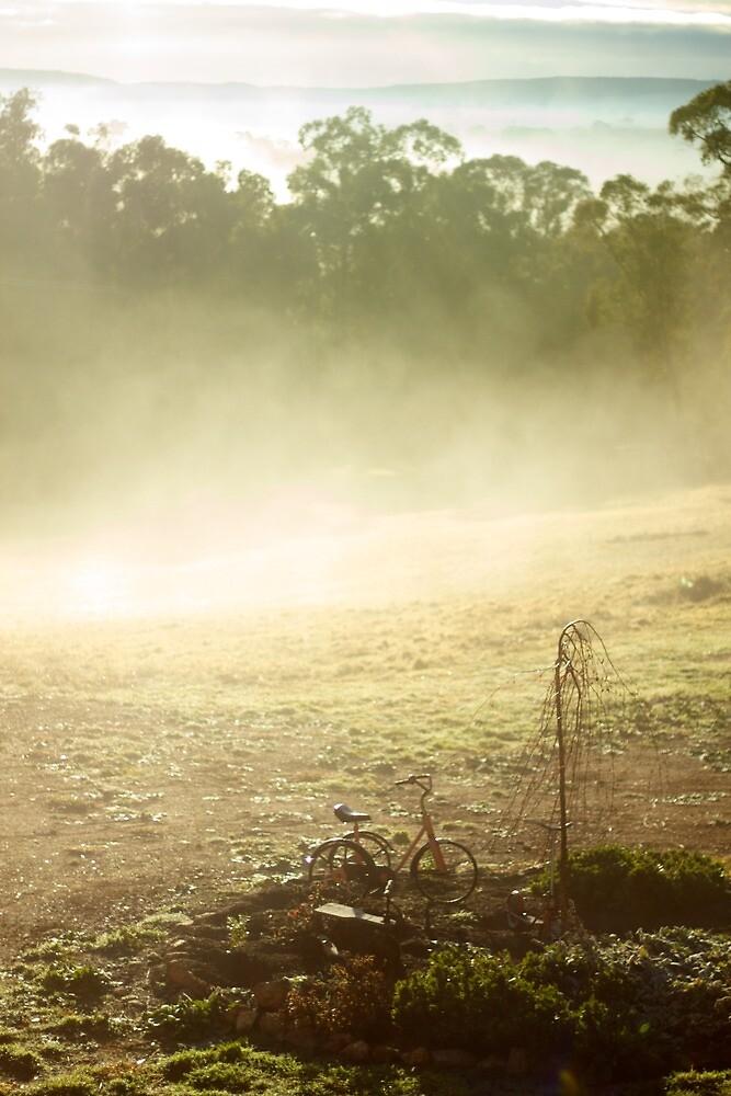 Mist by Matthew Tyrrell