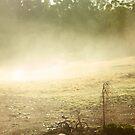 Mist by gematrium