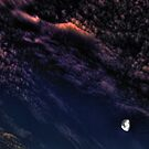 Gibbous Moon in a Mackerel Sky by Wayne King