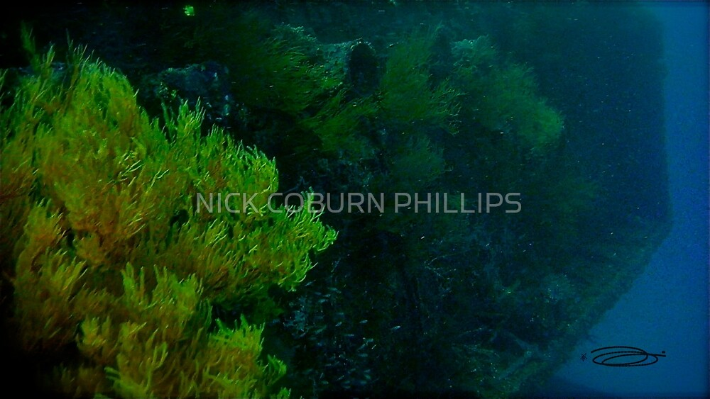 DEEP DOWN BLUE! by NICK COBURN PHILLIPS