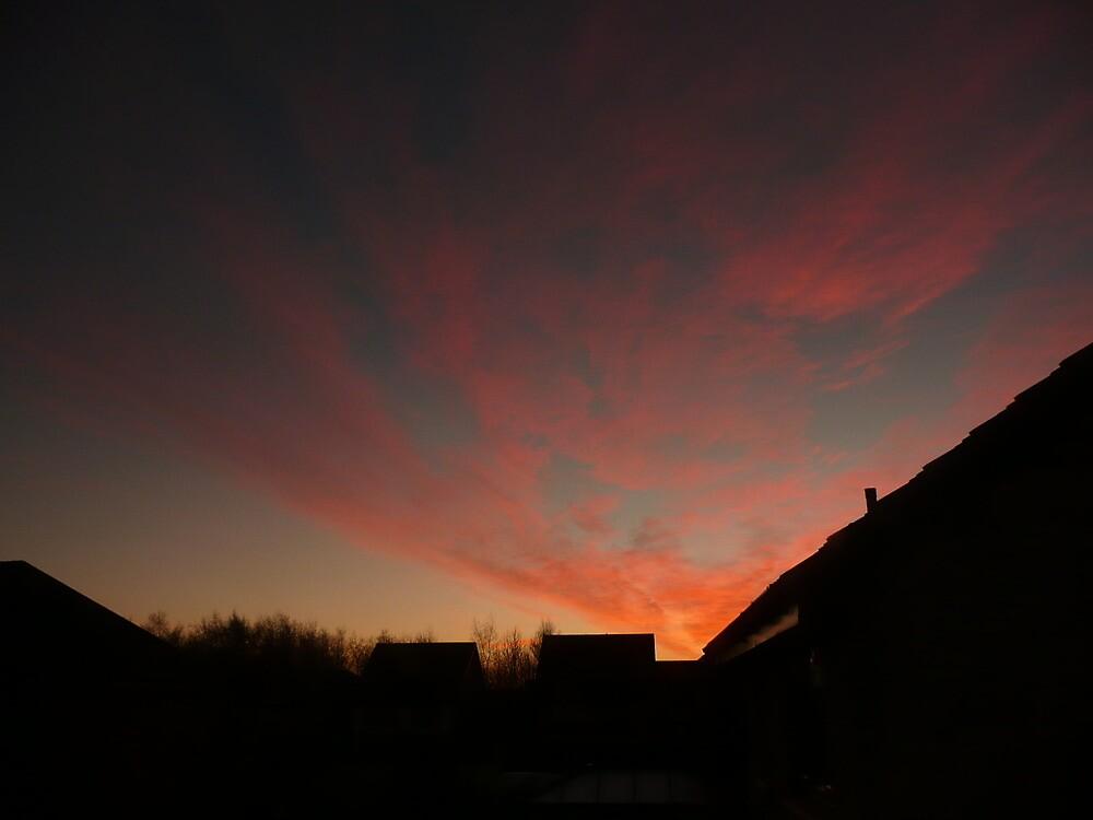 Dawn by Nik Watt
