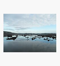 The Gearagh - Lee River  Cork Photographic Print
