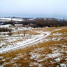snowy.rural.cart.road_Hungray.Europe.2010.Dec by ambrusz