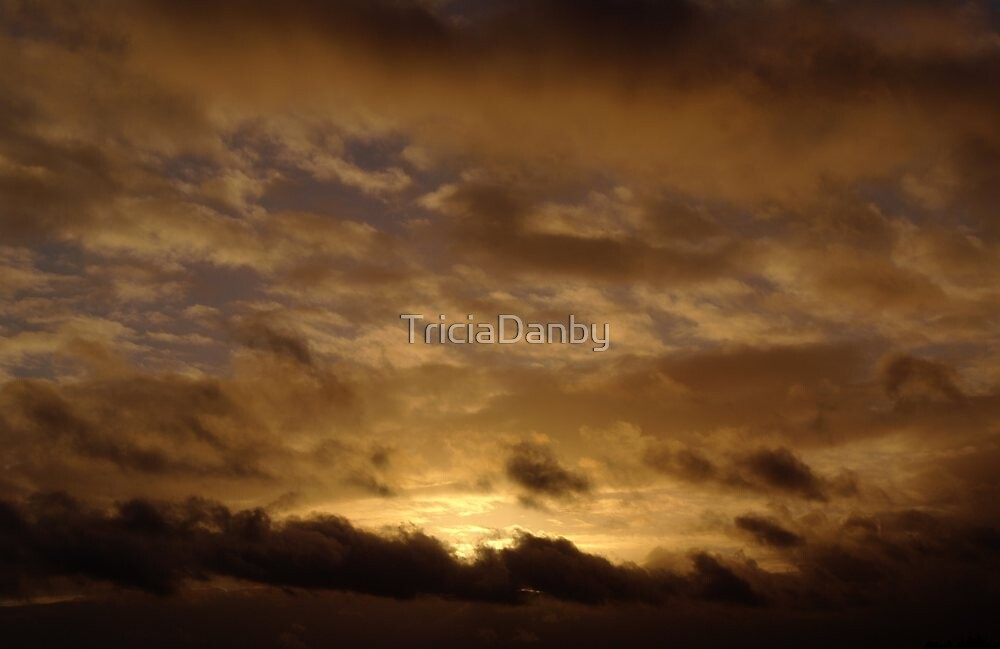 In the realms of heaven by TriciaDanby