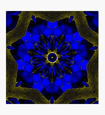Blue Swoon Photographic Print
