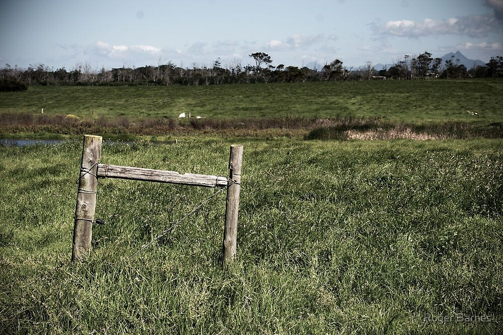 Fence, South Africa by Roger Barnes