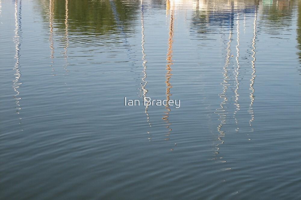 Reflections, Norfolk Broads by Ian Bracey