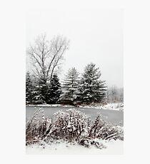 Winter Pond Photographic Print