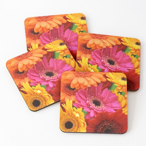 Brightly coloured gerbera Coasters (Set of 4)