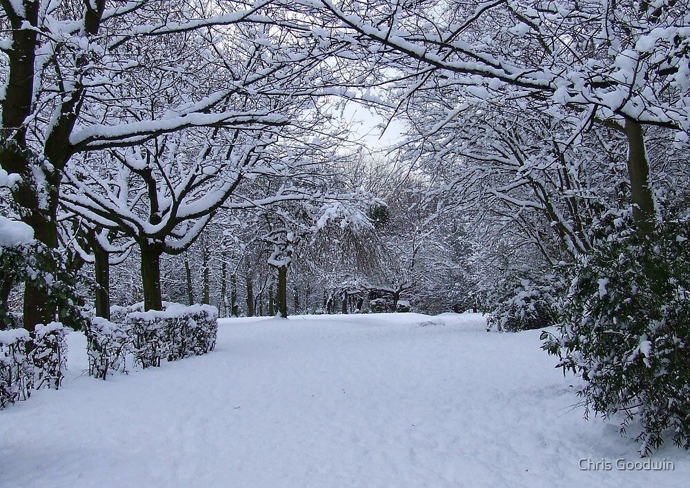 Archway of Snow by Chris Goodwin