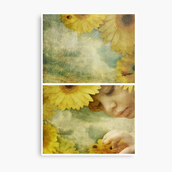Wonder - Or the Mystery of the Ladybird Metal Print