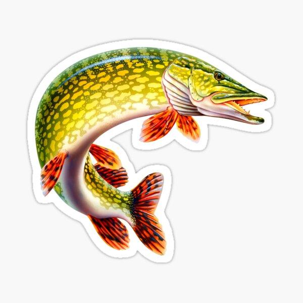 Full Feature Image Northern Pike Fisherman Fishing Sticker