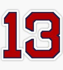 #13 Sticker