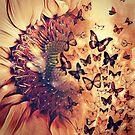 Sunflowers & Butterflies  by TheTeaFairy