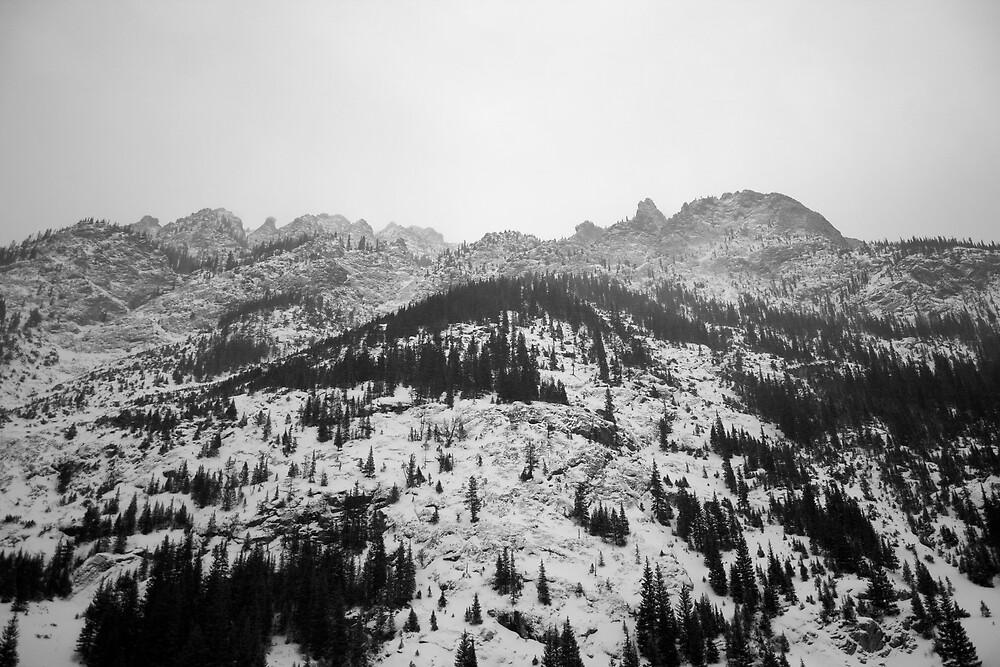 Winter Woods4 by McConkey