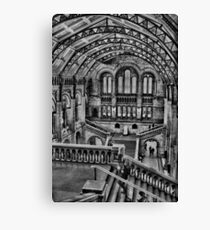 Natural History Museum B/W HDR  Canvas Print