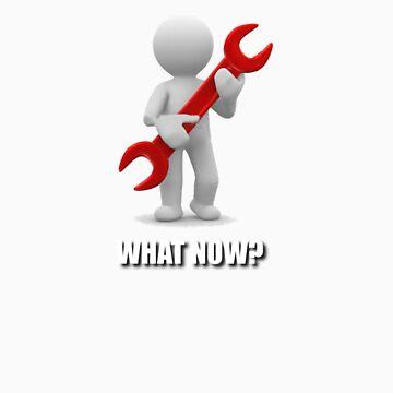 What Now? by TGURU
