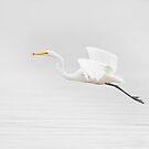 Flying Egret by Daniel  Parent