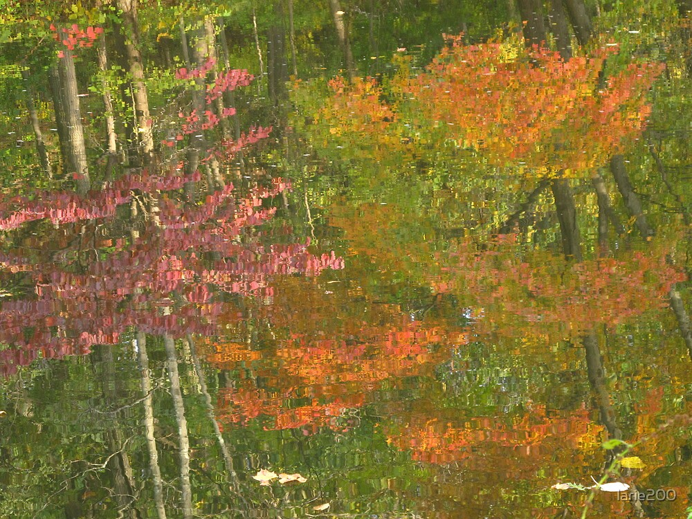 Reflections of a Changing Season by larie200