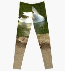 Merch #43 -- Swan - Shot 1 Leggings