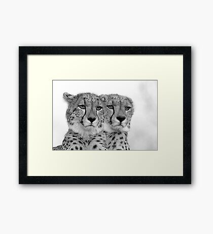 Seeing Double? Framed Print