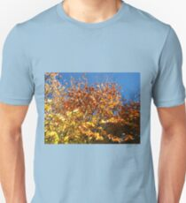 Sunlight on Russet Leaves T-Shirt