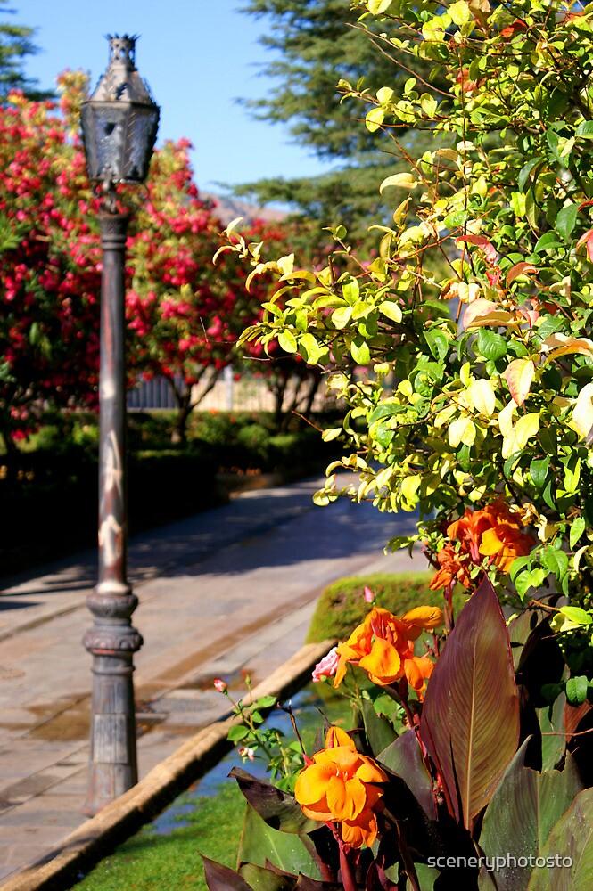 Garden in Ronda, Spain by sceneryphotosto