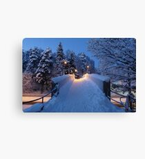 Winter In Suburbia II Canvas Print
