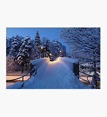 Winter In Suburbia II Photographic Print
