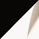 Black&white. II by Bluesrose