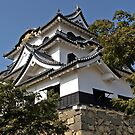 Hikone Castle, Japan. by johnrf
