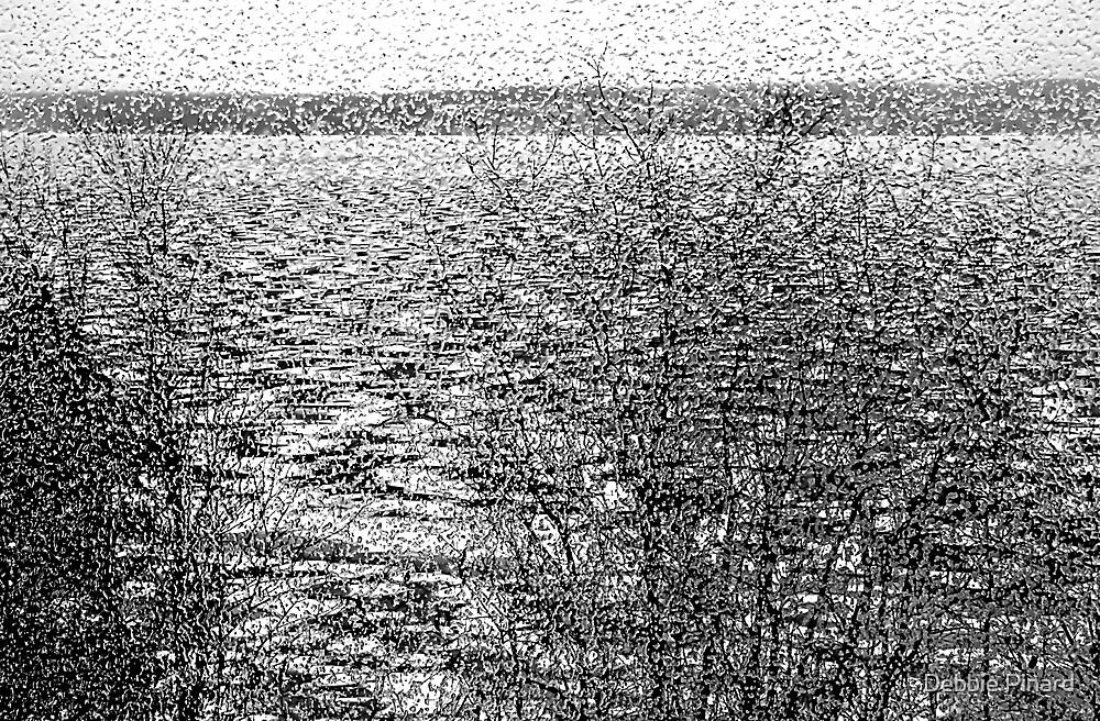 Rain on the Window 2 - Dunrobin Ontario by Debbie Pinard