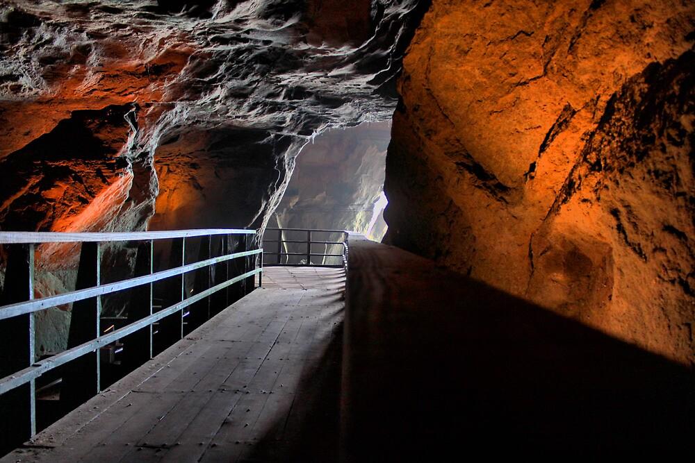 La Jolla Cave by Bill Fitch