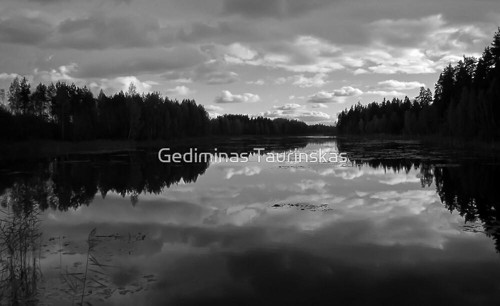 lake after the rain by Gediminas Taurinskas