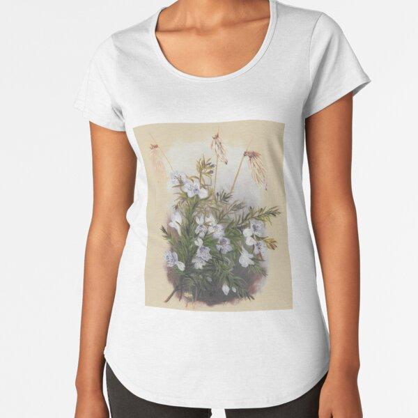 Western Australia wild flower Snakebush - Hemiandra pungens State Library of Western Australia Premium Scoop T-Shirt