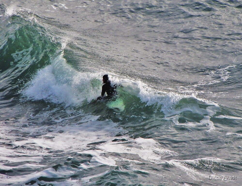 Thanksgiving Surfing... Oregon by Diane Arndt