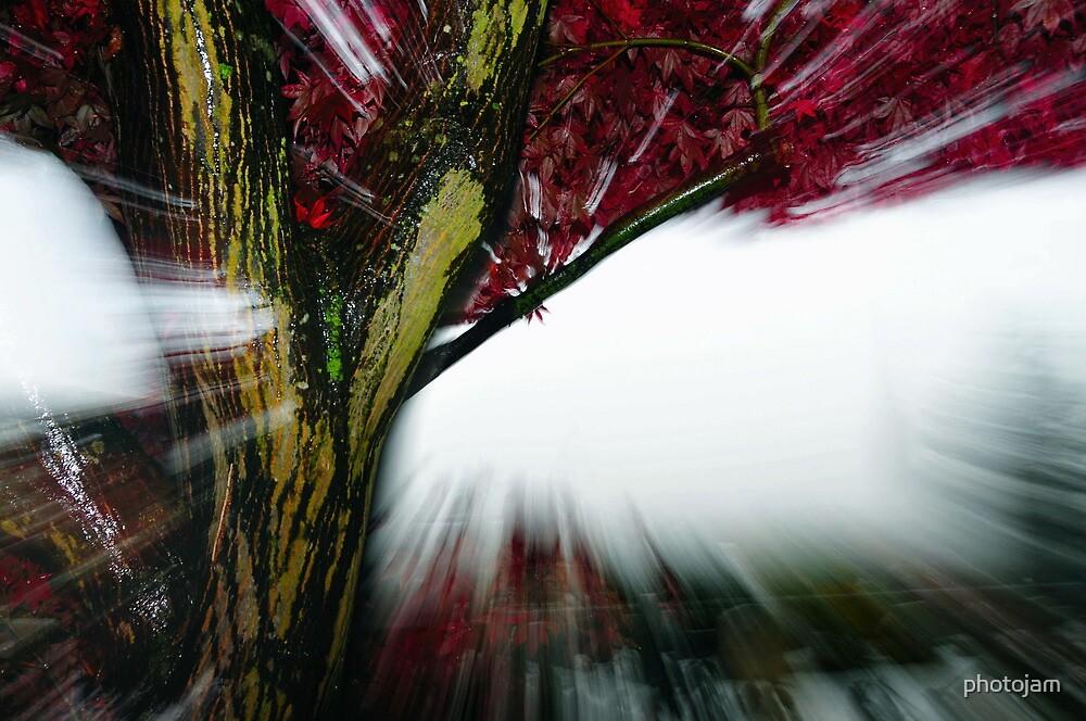 Flash photography by photojam
