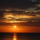 A Birthday Sunset on Mobile Bay.... by zpawpaw
