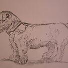 terrier sketchbook by leunig