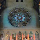 Christchurch Cathedralling ( 8 ) by Larry Davis