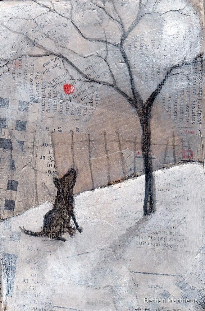 The last apple by Bethan Matthews