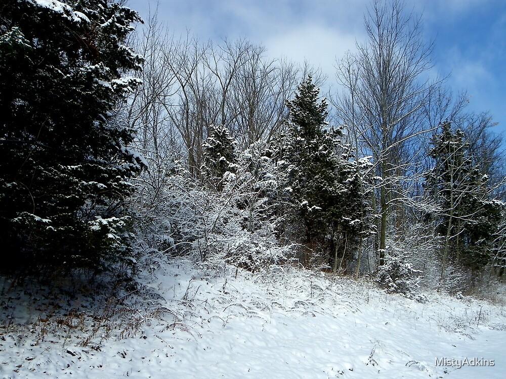 Snowy Scenery by MistyAdkins