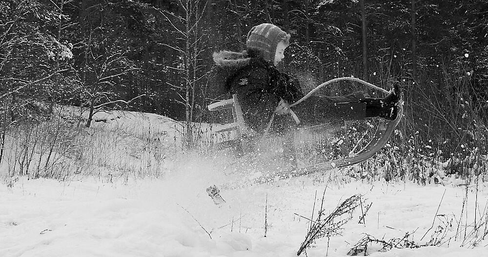 snowfly by WendenWerk