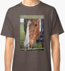 LOOKING THROUGH THE FENCE Classic T-Shirt