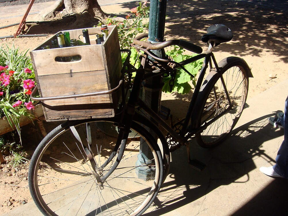 bicycle  by cesca