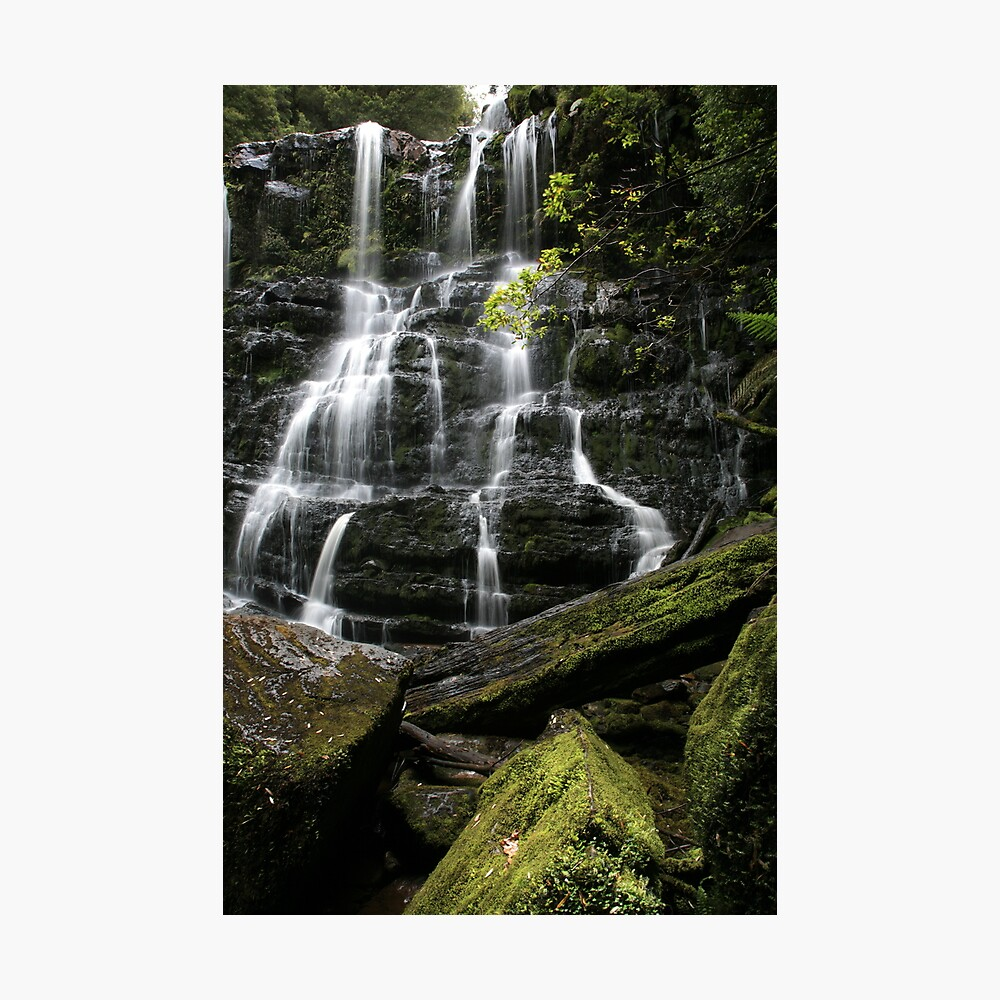 Nelson Falls, Tasmania, Australia Photographic Print