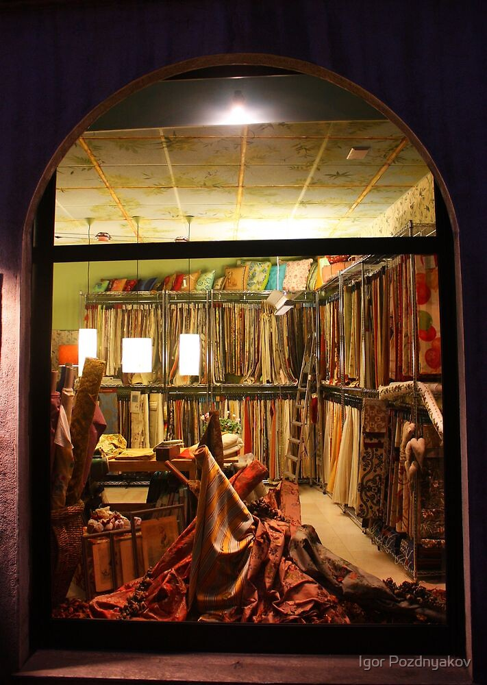 Fabrics Store Window. Pavia, Italy 2010 by Igor Pozdnyakov