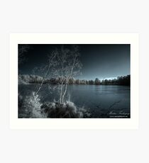 Frozen Moods at Thursley Art Print